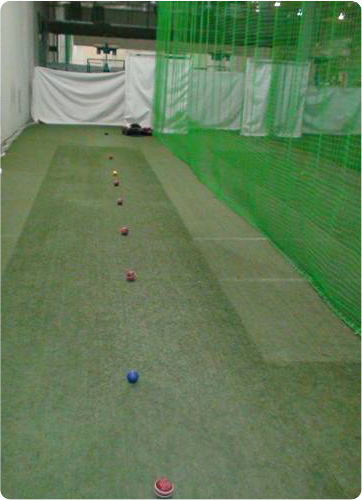 cricket pitch vision