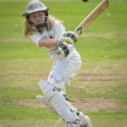 cricket-724621_1280